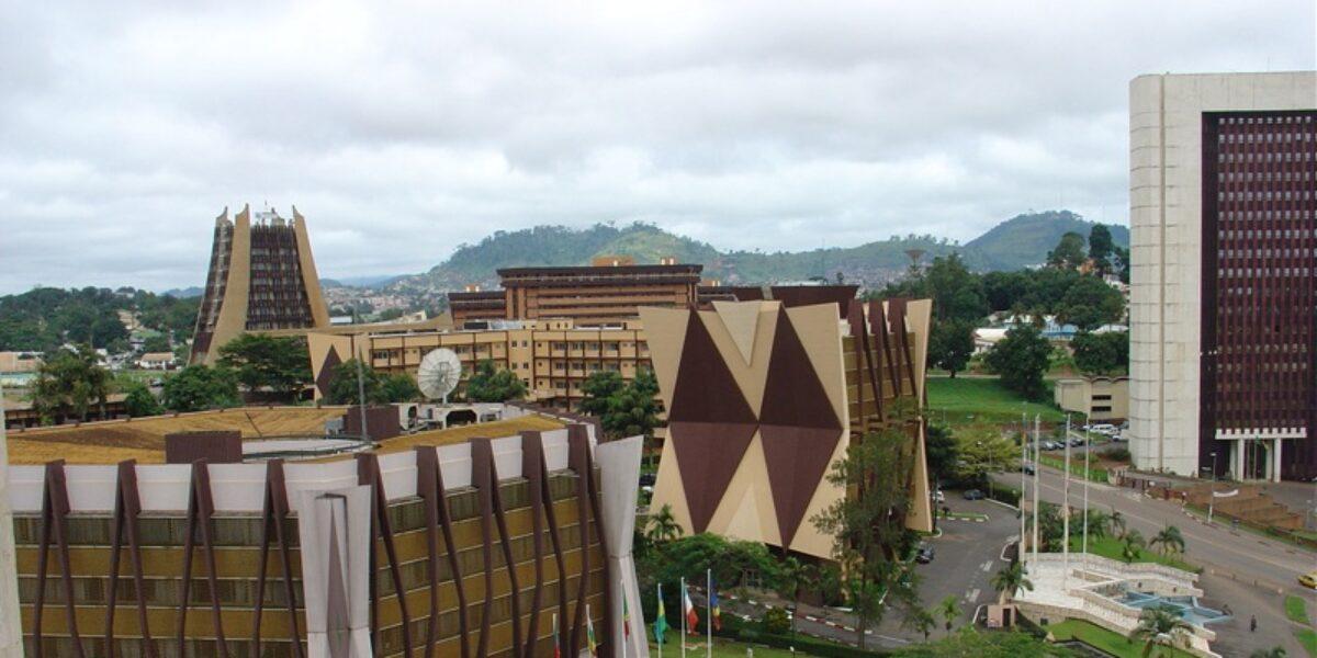 Opportunités d'investissements: opération séduction à Yaoundé